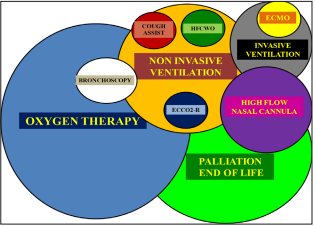 Ventilator Support and Oxygen Therapy in Palliative and End-of-Life Care in the Elderly